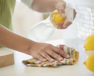 Vinegar Pest Control