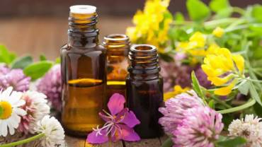 Essential Oils That Repel or Kill Insects