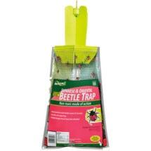 Beetle Trap Truly Green Pest Control