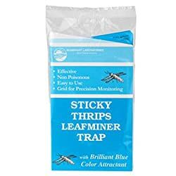 Sticky Thrips Leafminer Trap Organic Pest Control