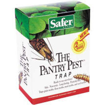 Pantry Pest Trap Natural pest service