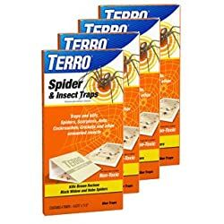Spider Trap Truly Green Pest control